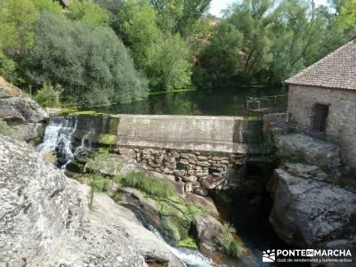 Cañones del Río Cega y  Santa Águeda  – Pedraza;rutas en avila parque natural hayedo de tejera